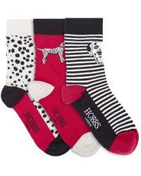 Hobbs Dalmatian Sock Set - Red