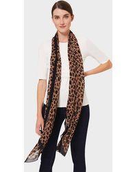 Hobbs Amari Leopard Scarf - Brown