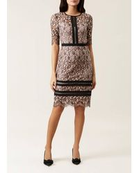 Hobbs Lace 'penny' Shift Dress - Pink