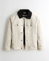 Hollister Sherpa-lined Denim Trucker Jacket - Multicolour