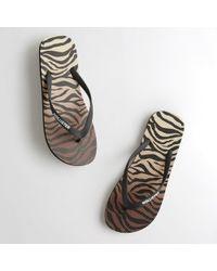 Hollister - Guys Tiger Print Flip Flops From Hollister - Lyst