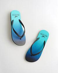 Hollister Ombré Logo Flip Flop - Blue