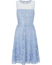 Shubette - Floral Lace Fit And Flare Dress - Lyst