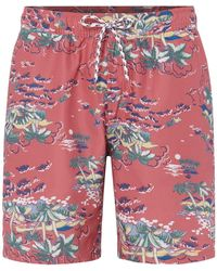 Izod Hawaii Print Shorts - Multicolour