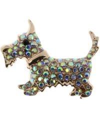 Indulgence Jewellery - Indulgence Rainbow Crystal Dog Brooch - Lyst