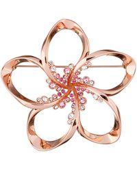 Ted Baker - Belvas Rose Gold Crystal Blossom Brooch - Lyst