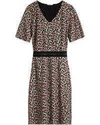Sandwich - Leopard Print Dress - Lyst