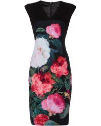 Ellen Tracy - Engineered Cap Sleeve Sheath Dress - Lyst