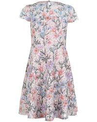 Kensie Floral Dress Ld92 - Multicolour