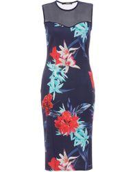 Quiz - Navy Aqua And Red Mesh Bodycon Dress - Lyst