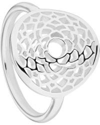 Daisy London - Rchk1007 Ladies Ring - Lyst