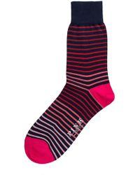 Thomas Pink - Hillard Stripe Socks - Lyst