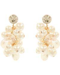 Coast   Adara Pearl Earrings   Lyst