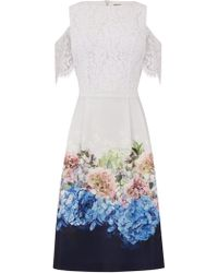Oasis - Hydrangea Lace Top Bardot Dress - Lyst