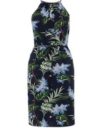 newest style of uk cheap sale shop for Oasis Stripe Holiday Sundress in Blue - Lyst