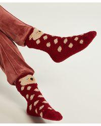 Hunkemöller Lara Icebear Sock - Rood
