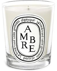Diptyque Ambre Scented Candle 70g - Metallic