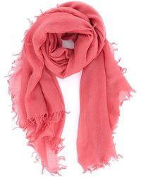 Aspesi Pink Cashmere Gauze Scarf