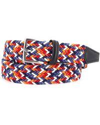 Anderson's Vivace cintura elastica intrecciata - Multicolore