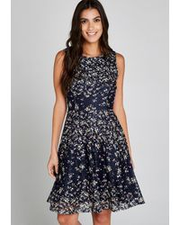 Apricot Spitzenkleid Ditsy Printed Lace Skater Dress - Blau