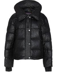 Moose Knuckles Gilley Puffer Jacket - Black