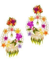Mercedes Salazar Fiesta Circle Floral Earrings