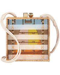 WAIWAI Oiticica Lucite And Rattan Box Bag - Multicolor