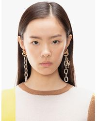 JW Anderson Jwa Chain Earrings - Metallic