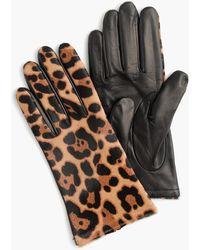 J.Crew Italian Leather Haircalf Tech Gloves - Black