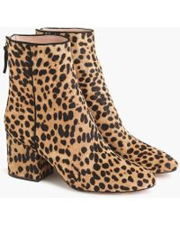 J.Crew Sadie Ankle Boots In Leopard Calf Hair - Brown