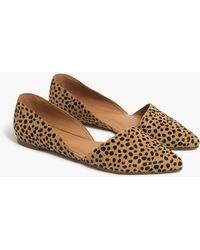 J.Crew Zoe Leopard Calf Hair D'orsay Flats - Brown