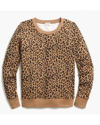 J.Crew Leopard Crewneck Sweatshirt - Multicolor