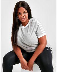 adidas Originals 3-stripes California Plus Size T-shirt - Gray