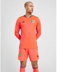 adidas Scotland 2020 Away Goalkeeper Shorts - Orange