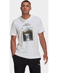 adidas Athletics Graphic T-shirt - White