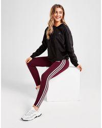 adidas Originals 3-stripes Linear Leggings - Red