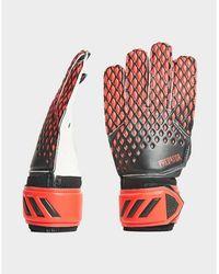 adidas Predator Goalkeeper Gloves - Multicolour