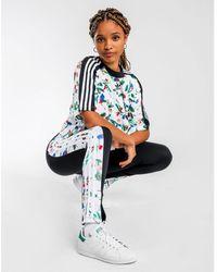 adidas Originals Cropped Allover Print T-shirt - Multicolour