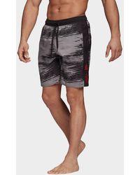 adidas Fc Bayern Munich Swim Shorts - Black