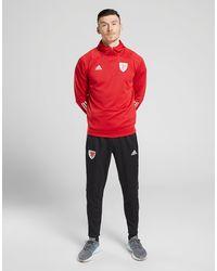 adidas Sudadera con capucha selección de Gales Condivo 20 - Rojo