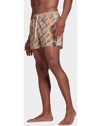 adidas Graphic Swim Shorts - Multicolor