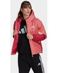 adidas Back To Sport Insulated Jacket - Red