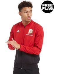 adidas - Fa Wales 2018/19 Presentation Jacket - Lyst
