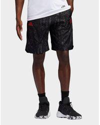 adidas Originals Harden Swagger Shorts - Black