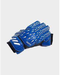 adidas Gants de Gardien de But Superlative Predator Training - Bleu