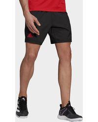 adidas Tennis Primeblue Ergo 7-inch Shorts - Black