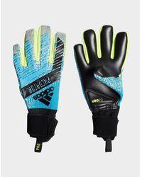 adidas Originals Predator Pro Goalkeeper Gloves - Blue