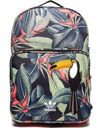 Adidas Originals | Classic Farm Backpack | Lyst