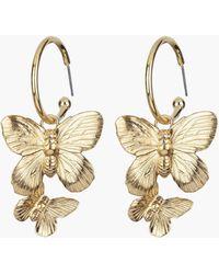 Jennifer Behr Brynn Hoop Earrings - Multicolor