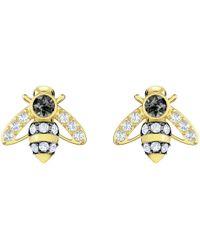 Swarovski - Magnetic Gold Plated Bee Stud Earrings : 5429351 - Lyst